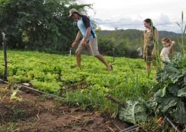 07.07.15 emater inclusão social na agricultura familiar foto emater 3 270x191 - Governo incentiva agricultura familiar e garante inclusão social de agricultores