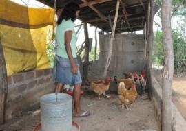 07.07.15 emater inclusão social na agricultura familiar foto emater 5 270x191 - Governo incentiva agricultura familiar e garante inclusão social de agricultores