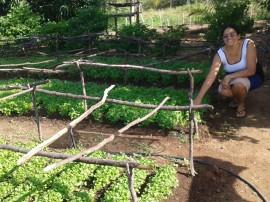 agrucultura familiar 2 270x202 - Governo lança Plano de Fortalecimento de Comercialização da Agricultura Familiar em Picuí nesta quinta-feira