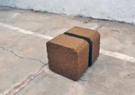 emater producao de blocos multinutricionais para alimentar rebanho 1 270x191 - Governo da Paraíba produz blocos multinutricionais para alimentar rebanho