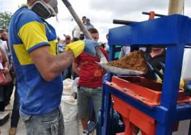 emater producao de blocos multinutricionais para alimentar rebanho 2 270x191 - Governo da Paraíba produz blocos multinutricionais para alimentar rebanho