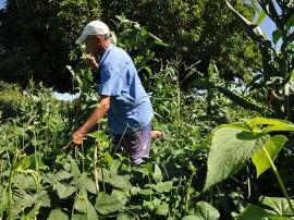 agricultor 12 08 DSC 1084 270x202 - Governo reúne agricultores em jornada de inclusão produtiva e discute convivência com Semiárido