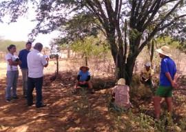 emater criadores de sume criam alternativa de producao de racao animal 2 270x191 - Emater orienta agricultores de Sumé sobre alternativa para produção de ração animal