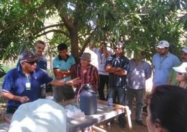 emater paa incentivo agroecologia alimento saudavel na pb 3 270x191 - Governo incentiva agroecologia e garante alimentação saudável na Paraíba