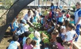 hortas3 sao jao do cariri 270x162 - Governo leva educação ambiental às escolas em São João do Tigre