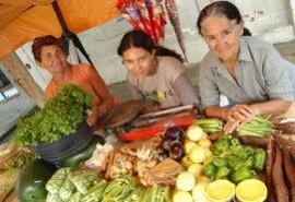 mulahres agricultura 270x185 - Governo do Estado realiza encontro em Campina Grande sobre a mulher na agricultura familiar
