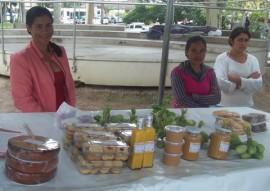 procase mulheres do semiarido trocam experiencia e discutem participacao no poder 1 270x191 - Governo promove Encontro de Mulheres do Semiárido Paraibano