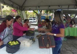 procase mulheres do semiarido trocam experiencia e discutem participacao no poder 4 270x191 - Governo promove Encontro de Mulheres do Semiárido Paraibano