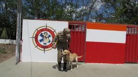 IMG 6141 270x151 - Corpo de Bombeiros capacita 18 militares para atuarem como condutores de cães de resgate