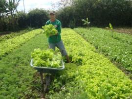 Pnae Picui 270x202 - Agricultores paraibanos comercializam produtos ao Pnae apesar da estiagem
