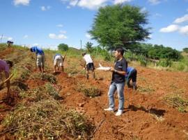 irrigação 0809 270x202 - Paraíba lidera contratações do Pronaf na região Nordeste
