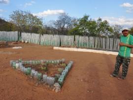 DSC 0837 cerca garrafa2 270x202 - Agricultor de Sumé usa pneus e garrafas para construção de cerca
