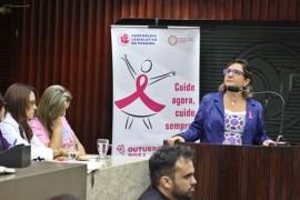 FOTO RicardoPuppe OutubroRosaAssembleia 1 1 270x180 - Governo do Estado participa de audiência pública sobre ações de prevenção e combate ao câncer de mama