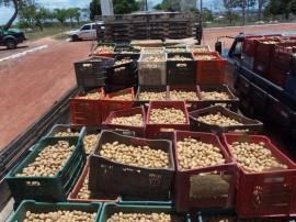 reabertura frigorífico esperança 1 270x202 - Governo reabre frigorífico de Esperança beneficiando produtores de batatinha