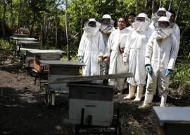 cooperar baia da traicao apicultura fotos kleide teixeira 040 270x191 - Governo do Estado realiza Dia Especial em Apicultura na Baía da Traição