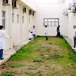 mutirão dengue 4