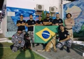 seap passa a contar com acoes com caes treinados nas penitenciarias 3 270x191 - Sistema prisional passa a utilizar cães nas operações de segurança