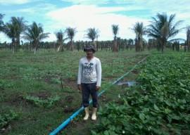 Irrigação Micro aspersão 18 02 2016 270x192 - Governo apoia ampliação de produção agrícola para atender PNAE e PAA no Estado