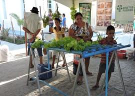 29 03 16 emater estimula hidroponia cultivo hortalias 1 270x192 - Governo do Estado incentiva cultivo de hortaliças com hidroponia