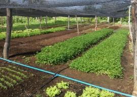 30 03 16 uso racional agua garante produtos horta liaspor 2 270x192 - Uso racional de água garante produção de hortaliças no Sertão