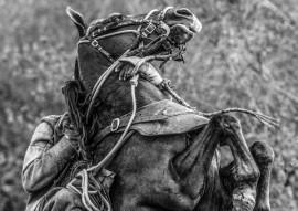 COUROS E LAJEDOS 02 270x191 - Funesc expõe 'Couros & Lajedos' do fotógrafo Augusto Pessoa