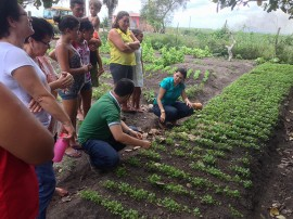 VISITA A HORTA portal 270x202 - Gestão Unificada comemora Dia Internacional da Mulher junto a agricultoras familiares