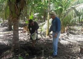 06 04 16 agricultores sao orientados uso racional deguapar 1 270x192 - Agricultores cultivam coco com uso racional de água em Sousa