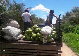 06 04 16 agricultores sao orientados uso racional deguapar 3 270x192 - Agricultores cultivam coco com uso racional de água em Sousa