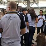 27_04_16 see alunos de escola padre jeronimo participam de aula de campo (6)