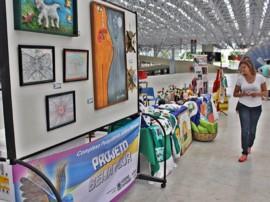 RicardoPuppe Feira Projeto Beija Flor copy 270x202 - Feirinha de Domingo movimenta Espaço Cultural com artesanato e atrações para crianças
