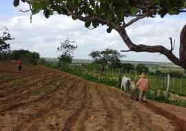 emater projeto algodao colorido pb evento internacional em goiania go 3 270x191 - Projeto Algodão Paraíba será apresentado em evento internacional em Goiânia