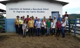emepa visita1 270x162 - Estudantes conhecem trabalho de pesquisa da Emepa sobre gado Guzerá e Sindi