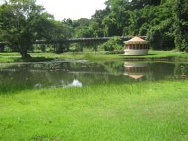 fotos jardim botanico 2 270x202 - Jardim Botânico de João Pessoa recebe centenas de visitantes no primeiro trimestre