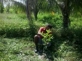 goiaba3 270x202 - Agricultor de Marizópolis encontra alternativa para superar deficiência hídrica no Sertão