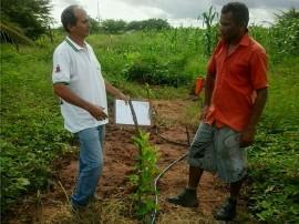 goiaba4 270x202 - Agricultor de Marizópolis encontra alternativa para superar deficiência hídrica no Sertão