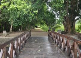 jardim botanico abre trilha ecologica foto jose lins 22 270x192 - Jardim Botânico de João Pessoa recebe centenas de visitantes no primeiro trimestre