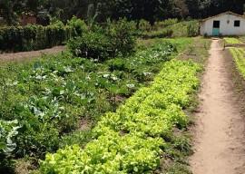 rio tinto5 270x192 - Governo do Estado e MDA contemplam mulheres rurais com projetos produtivos em Rio Tinto
