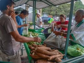 25.04.14 feira emater fotos antonio david 2 1 270x202 - Governo do Estado inaugura feira da Agricultura Familiar do Projeto Ecoprodutivo neste sábado