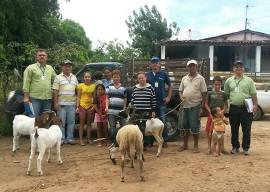 caprinos Oziel11 05 2 270x192 - Agricultores do Ecoprodutivo recebem matrizes e reprodutores de caprinos do Governo do Estado