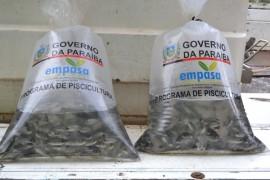 pis631 270x180 - Governo do Estado entrega 30 mil peixes a produtores rurais de Areia