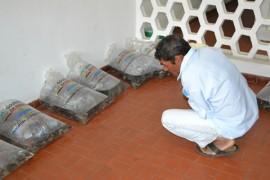 pis643 270x180 - Governo do Estado entrega 30 mil peixes a produtores rurais de Areia
