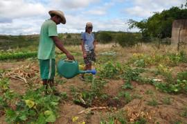 DSC 0831 270x179 - Projeto Ecoprodutivo contempla famílias com mudas frutíferas no Sertão paraibano