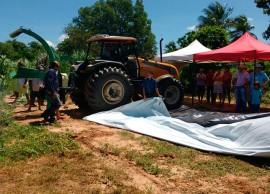 dia de campo silagem2 portal 270x194 - Governo do Estado promove eventos sobre produção de silagem