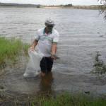 pis344 150x150 - Governo da Paraíba realiza peixamento em reservatórios d'água do estado