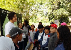 jb visita3 270x190 - Alunos de Escola Estadual participam de Trilha Ecológica no Jardim Botânico