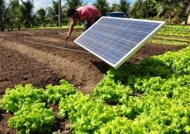 projeto de irrigacao com energia solar 2 270x191 - Agricultores conhecem projeto de irrigação com energia solar