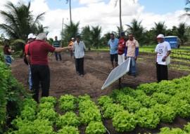 projeto de irrigacao com energia solar 4 270x191 - Agricultores conhecem projeto de irrigação com energia solar