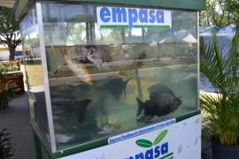 fa10 270x180 - Em João Pessoa: Empasa participa da Semana da Alimentação
