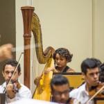 concerto ospb 24.11.16_thercles silva (14)