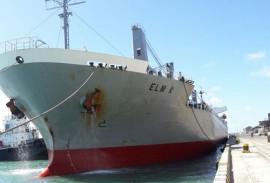 porto de cabedelo recebeu navios da italia e argentina 1 270x183 - Mês de novembro registra movimentação intensa de cargas no Porto de Cabedelo